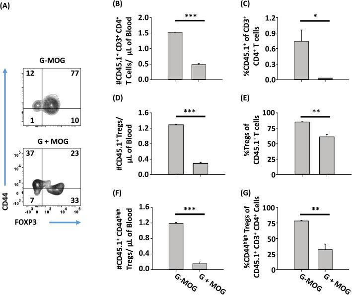 """GMCSF-MOG preferentially expanded Tregs from a memory T cell pool. On day − 1, a CD45.1-2D2-FIG mixed Treg and Tcon line (40% Tregs and 60% Tcons) was injected intravenously (1.25 × 10 6 cells) into CD45.2 2D2-FIG- Rag1 −/− mice ( n = 3). On day 0, 2D2-FIG- Rag1 −/− recipient mice were vaccinated with 4 nmol of GMCSF-MOG or 4 nmol GM-CSF + 4 nmol MOG 35–55 . PBMCs were analyzed on day 4 for CD3, CD4, CD45.1, CD44, and FOXP3. Shown are analyses of donor CD45.1 CD3 + CD4 + T cells including a representative dot plots of GMCSF-MOG and """"GM-CSF + MOG""""-treated mice for CD44 ( y -axis) and FOXP3 expression ( x -axis) together with ( b , d , f ) cell numbers per microliter of blood and ( c , e , g ) percentages of designated cell populations. Statistical significance was analyzed by use of a two-tailed t test. ( *p"""