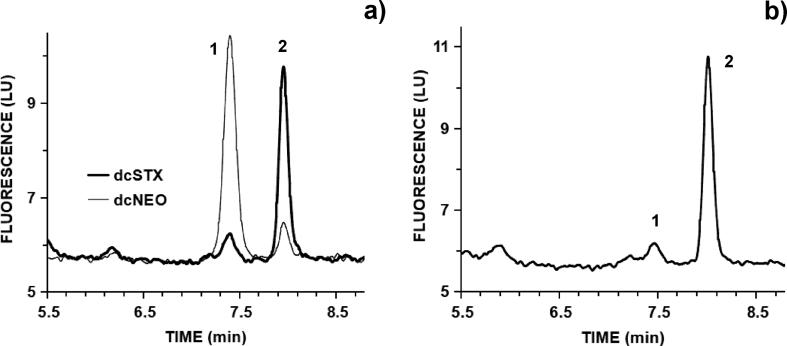 HPLC-FLD chromatograms after periodate oxidation from: a) overlaid toxins standards of dcNEO (0.37 μM) and dcSTX (0.70 μM), both producing two oxidation products coded '1' and '2'; b) urine sample from patient A on 2018-10-11 after C18 cleanup dominated by dcSTX oxidation products.
