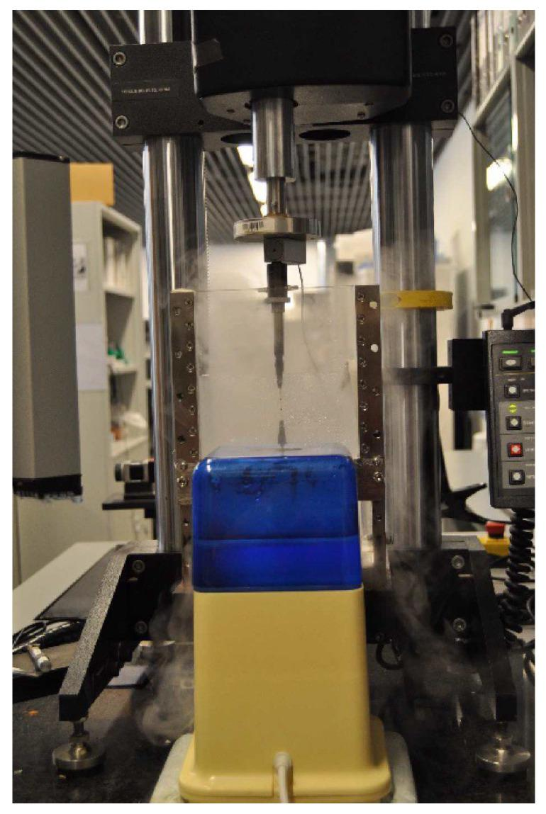 Experimental setup. Instron <t>Microtester</t> 5548 System with two clamps holding the sample. The samples are subjected to the tensile test under a humidity-controlled environment to prevent sample drying.