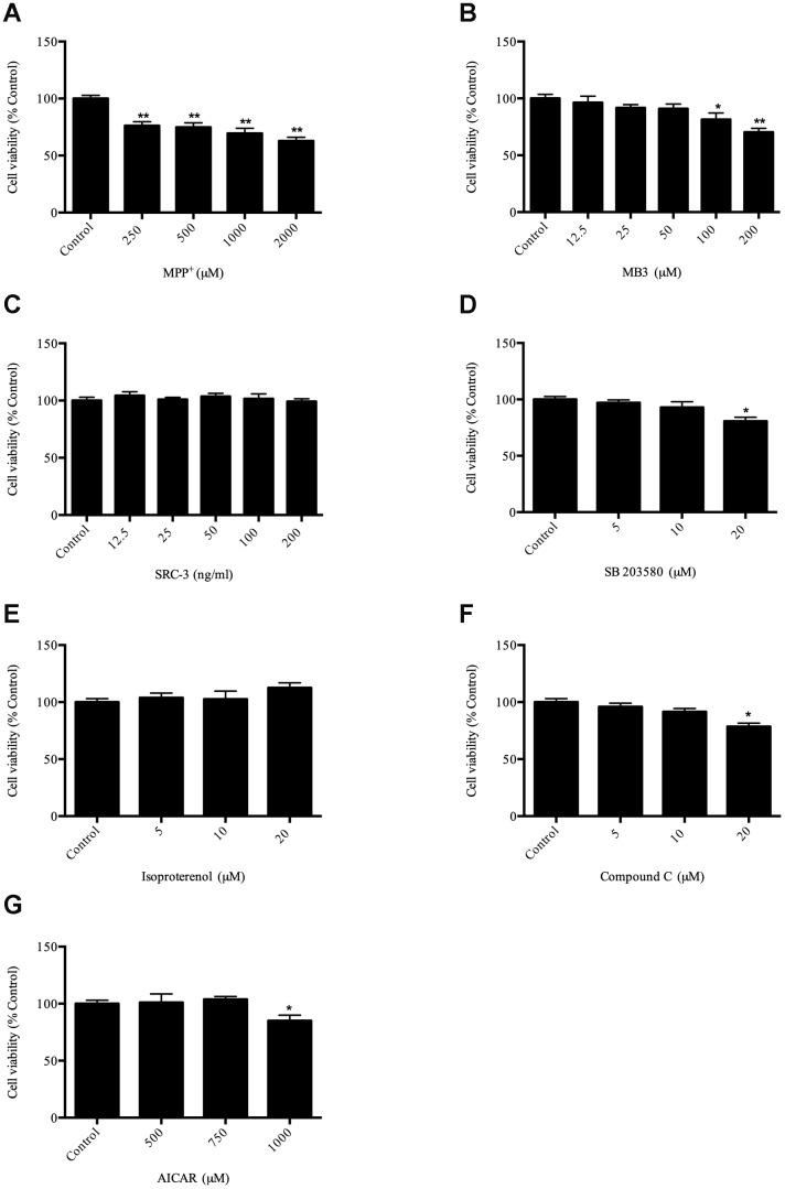 Evaluation of compounds on cell viability ( A ) cell viability after MPP + treatment; ( B ) cell viability after MB-3 treatment; ( C ) cell viability after SRC-3 treatment; ( D ) cell viability after SB203580 treatment; ( E ) cell viability after isoproterenol treatment; ( F ) cell viability after Compound C treatment; ( G ) cell viability after AICAR treatment. * P