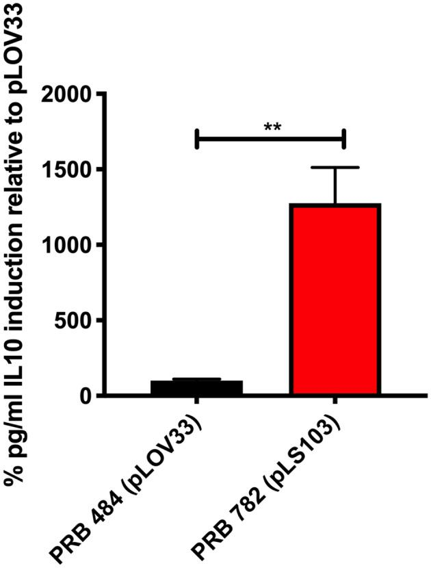 PRB782 shows improved biological activity. Induction of <t>IL-10</t> production with treatment of Colo205 cells with induced bacterial supernatant from PRB484 and PRB782 showed PRB782 to have significantly (~15-fold) higher biological activity as compared to PRB484. Data represent the average of 3 biological replicates with error bars indicating standard deviation from the mean. Comparison performed with t -tests. ** P