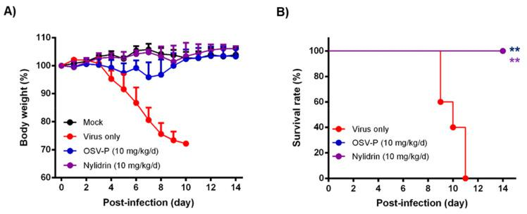 In vivo antiviral activity of nylidrin against a mouse-adapted influenza A virus (H1N1), maPR8. Before viral challenge, maPR8 (5 MLD 50 ) was preincubated with DMSO (virus only) or with nylidrin (10 mg/kg) at room temperature for 30 min. Mice were mock-infected or infected with the preincubated samples. As a positive control, OSV-P (10 mg/kg/day) was orally administered twice a day beginning 4 h before virus infection at 8-h intervals from days 0 to 5 post-infection. Body weight ( A ) and mortality ( B ) were measured every day for 15 days. Statistical analysis was performed using a two-tailed unpaired t -test relative to the virus-only group. n = 5; **, p