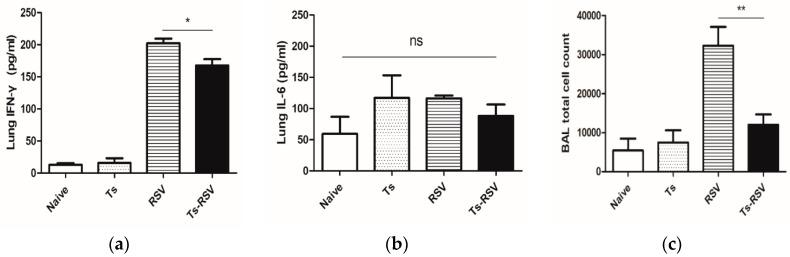 Pre-existing T. spiralis infection in mice attenuates RSV-induced pulmonary inflammation. Pro-inflammatory cytokine levels and inflammatory cell influx in the bronchoalveolar lavage fluid were quantified. Individual lung homogenates collected from the left lobe of 3 mice were used to assess IFN-γ ( a ) and IL-6 ( b ) levels. Bronchoalveolar lavage fluid was collected in 500 uL PBS from the right lobe of the remaining 3 mice by constricting the pulmonary blood vessels with a clamp ( c ). Cells were counted under the microscope after RBC lysis. Data are representative of three independent experiments presented as mean ± SEM, and statistical significance was determined using one-way ANOVA with Tukey's post hoc analysis (* p
