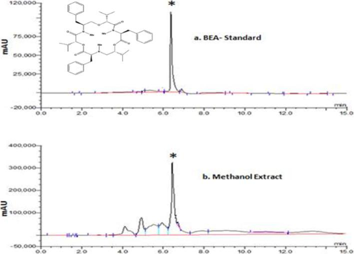 a HPLC profile representing signal generated at 210nm by injecting 20 μl of 20μg/ml beauvericin (BEA) standard; b methanol extract from mycelia