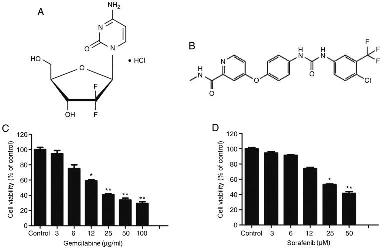 Dose-dependent cytotoxic effect of gemcitabine and sorafenib on A549 cells. (A and B) The molecular structure of (A) gemcitabine and (B) sorafenib. (C and D) A549 cells were treated with (C) 0–100 µg/ml of gemcitabine and (D) 0–100 µM of sorafenib for 48 h, and cell viability was determined by an MTT assay. *P