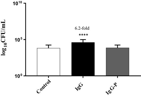 Bifidobacterium longum NCIMB 8809 adherence to HT-29 cells exposed to sodium <t>metaperiodate-treated</t> IgG and untreated IgG. *Denotes a significant difference compared to the control where p