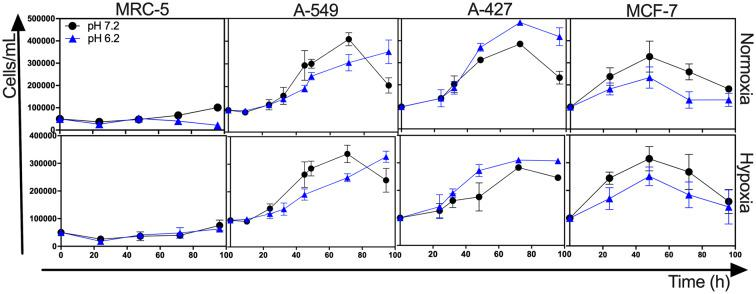 Growth curves of MRC-5 fibroblast cells and A-549, A-427, and MCF-7 tumor cells followed through 96 h, using RPMI-1640 glucose (10 mM) and lactate (2 mM) adjusted at pH 7.2 or pH 6.2 under normoxia (21% O 2 ) or hypoxia (2% O 2 ).