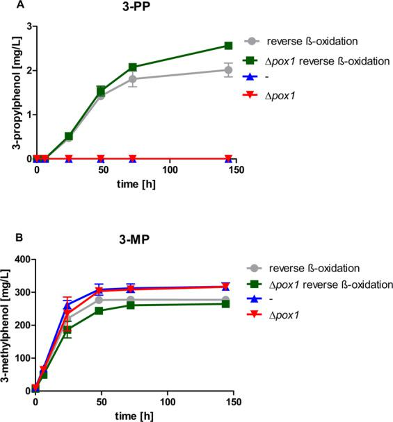3-Propylphenol formation via 'reverse ß-oxidation'. 3-Propylphenol ( A ) and 3-methylphenol production ( B ) was measured in culture supernatants of CEN.PK2-1C expressing the 3-methylphenol pathway ( Ppopt MSAS , opt npgA and opt patG 14 ) with or without additional expression of the 'reverse ß-oxidation' pathway ( ERG10 , opt hbd , opt crt and opt ter 21 , 22 ) (strains 194 and 162, respectively), and with additional pox1 deletion (strains JHY212 and JHY211, respectively). High-OD fermentations (starting OD = 5) were performed in biological duplicates at 30 °C in KP i buffered YPD medium at pH 6.5. Culture supernatants were analysed via HPLC for 3-alkylphenol production. Error bars represent standard deviations.