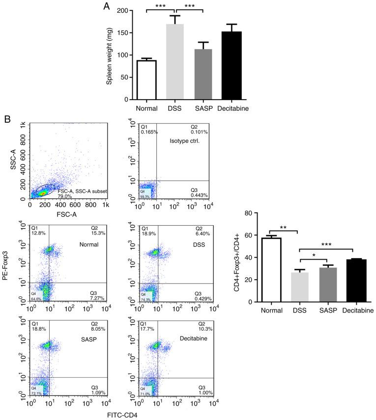 Decitabine treatment increases the proportion of CD4+ Foxp3+ T cells among CD4+ T cells in the spleen. (A) Mice spleen weights following treatments. (B) Flow cytometry analysis of the proportion of CD4+ Foxp3+ T cells in CD4+ T cells. Data are presented as the mean ± standard deviation. * P