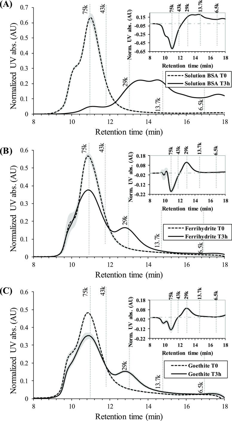 Area-normalized SEC chromatograms of 100 mg L –1 BSA in aqueous solution (A) and the phosphate-desorbed fraction of ferrihydrite-associated BSA (B) and goethite-associated BSA (C), before ( T 0) and after 3 h proteolysis reaction ( T 3h). The experiments were performed at a BSA surface coverage of 1.4 mg m –2 (corresponding to total BSA concentrations of 200 and 100 mg L –1 in the ferrihydrite and goethite systems, respectively) at pH 4.0 in 0.01 M NaCl and at a protease concentration of 10 mg L –1 . The insets show the difference between the chromatograms at T 3h and T 0. The horizontal dotted lines in the insets indicate the 0-level. The shaded bands represent standard deviations ( n = 2). The molecular masses (in Da) of peptide standards are represented by the vertical dotted lines.