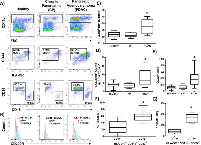 CD200 receptor (CD200R) is elevated on MDSC from patients with PDAC. PBMC were isolated from healthy donors (n=9), patients with chronic pancreatitis (CP; n=10), or pancreatic ductal adenocarcinoma (PDAC; n=17) and (A) stained by flow cytometry for granulocytic (CD11b+CD33+HL-DR −/low CD15+) and monocytic (CD11b+CD33+HL-DR -/low CD14+) MDSC. (B) Representative CD200R (blue) or isotype control (red) staining of CD15+ MDSC. (C) Percent total MDSC, (D) CD200R positive cells, and (E) mean fluorescent intensity (MFI) were quantified across all patient groups. (F) Percent and (G) MFI of either CD14+ or CD15+ MDSC that express CD200R. Mean±SD; *p