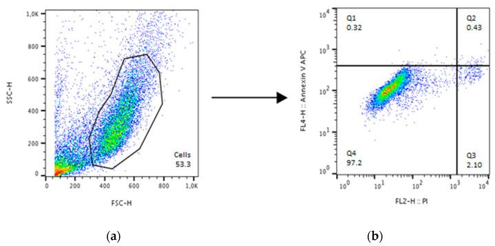 Gating strategy for cell death detection with annexin and propidium iodide (PI) exemplified using untreated human osteoblasts. Analysis took place with FloJo. ( a ) Gating of cells from the debris using the side scatter height (SSC-H) and forward scatter height (FSC-H) channel. This gate was used to detect the different stainings in ( b ) where quadrant (Q)1 represents annexin single positive cells, Q2 annexin/PI double positive cells, Q3 PI single positive cells and Q4 annexin/PI double negative cells.