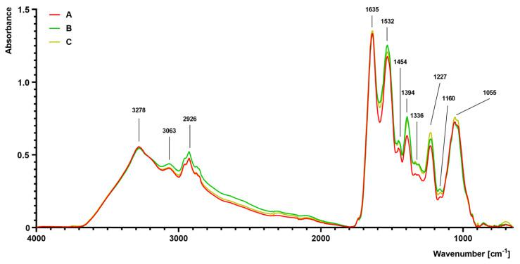 Fourier transform infrared (FTIR) spectroscopy analysis of S. aureus Newman strain isolated from different modifications of the Mueller-Hinton agar: non-supplemented (control medium A); supplemented with 1% ( v/v ) Tween 80 (medium B); supplemented with 1% ( v/v ) Tween 80 and trans -anethole at subinhibitory concentration—MIC 50 (medium C).