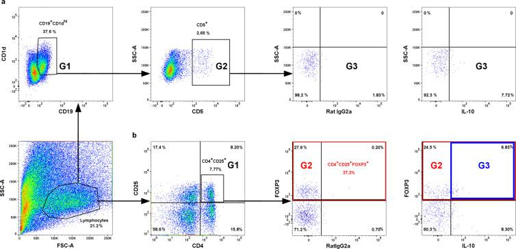 Representative dot plots for the process of regulatory T and B lymphocytes gating in spleen sample. (a) Gating strategy for CD19 + CD1d + CD5 + IL-10 + lymphocytes: G1 represents CD19 + CD1d + cells, G2 represents CD19 + CD1d + CD5 + cells, and G3 represents CD19 + CD1d + CD5 + IL-10 + cells. (b) Gating strategy for CD4 + CD25 + FOXP3 + IL-10 + lymphocytes: G1 represents CD4 + CD25 + cells, G2 represents overall CD4 + CD25 + FOXP3 + cells, and G3 represents CD4 + CD25 + FOXP3 + IL-10 + cells.