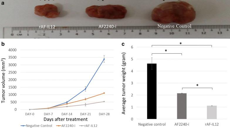 Effects on the CT26 tumours for the negative control, AF2240-i, and rAF-IL12 groups. a Images of CT26 tumour harvested from negative control, AF2240-i, and rAF-IL12 groups following the 28-days of treatment. b The growth rate of the CT26 tumours from day-0 until day-28 of treatments. c Average weight of CT26 tumours harvested from mice after 28-days of treatment. Data are represented as mean ± S.E.M. of six mice per group. Mean values with statistical difference at p
