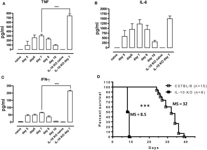 Uncontrolled inflammation in T. brucei -infected IL-10-deficient mice. (A–C) Cytokine levels were measured by ELISA in plasma of naive mice, infected WT mice on days 5, 6, 7, 8, and 10 p.i. and naive vs. infected IL-10-deficient mice on day 7 p.i. Data are represented as mean of 6 mice per group ± SEM and are representative of 2 independent experiments. (D) Survival of WT and IL-10-deficient mice following T. brucei infection i.p., where the median survival (MS) of each group is indicated in days. Data are presented as a pool of two representative independent experiments with a minimum of three mice per group, where *** p ≤ 0.001.