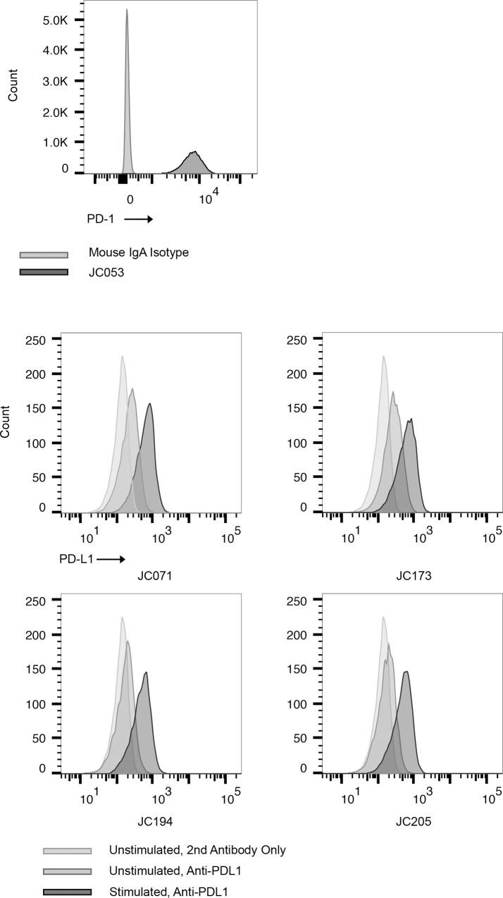Detection of PD-1 and PD-L1 expression on canine cell lines. (A) PD-1 expression on CLGL-90 cells was detected with JC053 hybridoma culture supernatant. Biotinylated anti-mouse IgA and FITC-conjugated <t>streptavidin</t> was used. Mouse IgA isotype control was used as negative control. Light gray is for isotype control and dark gray is for JC053. (B) Four purified anti-PD-L1s were compared in their capacity to bind activated DH82 cells. DH82 cells were cultivated either with or without 10ng/ml IFN-γ and JC071, JC173, JC194, and JC205 binding to PD-L1 was assessed. Histograms show unstimulated DH82 without anti-PD-L1 (light gray), unstimulated DH82 with anti-PD-L1 (medium gray), and IFN-γ stimulated DH82 with anti-PD-L1 (dark gray), respectively. FITC conjugated Anti-Mouse IgG was used with all samples including no anti-PD-L1 sample, as secondary antibody. PD-1 or PD-L1 positive population was selected following FSC, SSC gating, single cell gating, and live cell gating.