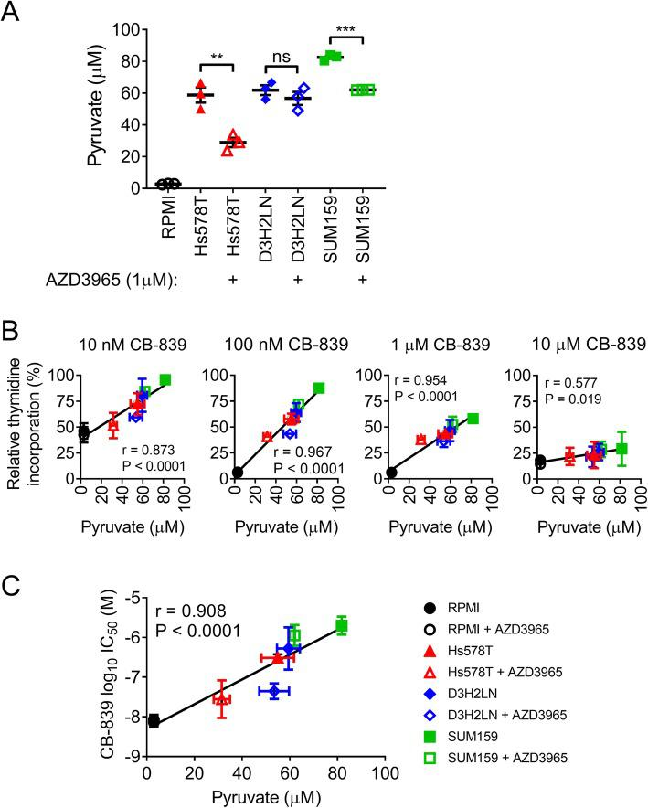 Pyruvate secreted by TNBC cell lines reduces the potency of CB-839. a Pharmacological MCT1 inhibition using 1 μM AZD3965 reduced the secretion of pyruvate by Hs578T and SUM159PT (SUM159) but not MDA-MB-231-luc-D3H2LN (D3H2LN) cells. Pyruvate concentration in the conditioned or unconditioned RPMI 1640 + 5% FBS (RPMI) culture medium was quantified after 48 h incubation (mean ± SEM, n = 3, t test). b The pyruvate concentration in the conditioned culture medium from a correlates with resistance of recipient MDA-MB-231 cells to CB-839-treatment at 10 nM, 100 nM, 1 μM or 10 μM over 3 days exposure. For each of the TNBC cell lines studied the AZD3965-treated samples of conditioned culture medium demonstrated a decrease in relative thymidine incorporation in recipient MDA-MB-231 cells (mean ± SD, n = 2). c IC 50 analysis also demonstrates a correlation between CB-839 sensitivity and pyruvate concentration in the conditioned culture medium from a (mean ± SD, n = 2). Correlations were computed by Pearson r correlation coefficient analysis