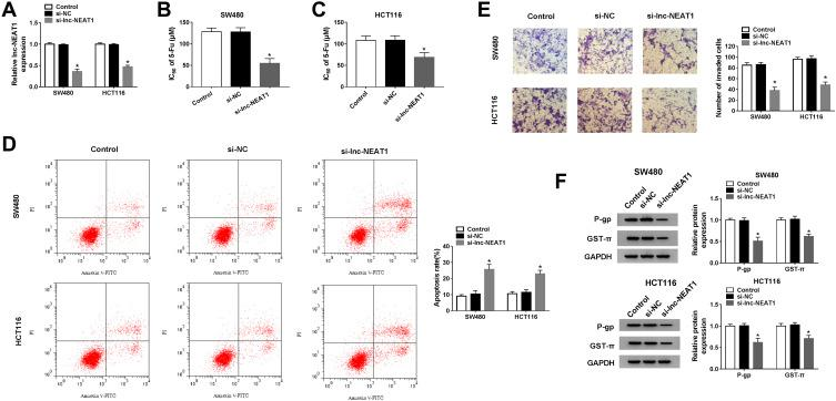 Effects of lnc-NEAT1 knockdown on CRC cell progression. SW480 and HCT116 cells were transfected with si-lnc-NEAT1 or si-NC. ( A ) The expression of lnc-NEAT1 was determined by qRT-PCR to evaluate transfection efficiency. ( B and C ) The IC 50 values of SW480 and HCT116 cells were assessed by MTT assay. ( D ) Flow cytometry was used to measure the apoptosis rates of SW480 and HCT116 cells. ( E ) Transwell assay was performed to test the number of invaded SW480 and HCT116 cells. ( F ) The proteins levels of P-gp and GST-π in SW480 and HCT116 cells were detected by WB analysis. One-way ANOVA. * P