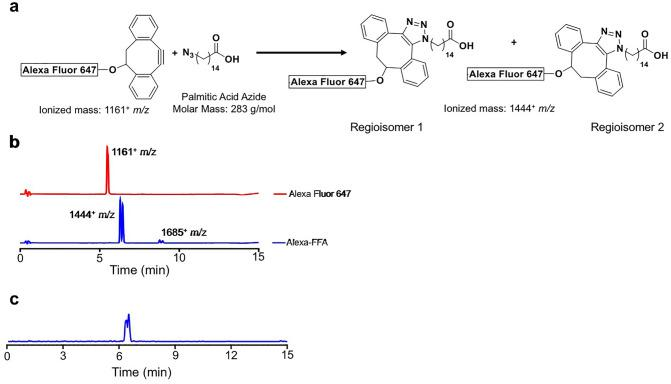Chemical synthesis and characterization of AlexaFFA. ( a ) Schematic of the coupling reaction between Click-IT™ Alexa Fluor 647 DIBO Alkyne and <t>15-azidopentadecanoic</t> acid producing two regioisomers. ( b ) LC–MS (UV detection 254 nm) of Alexa Fluor 647 DIBO Alkyne (red line) and the coupling products (blue line) showing a doublet with an ionized mass of 1,444 + m/z (regioisomer 1,2) and a by-product with an ionized mass of 1685 + m/z. ( c ) Mass spectrometry of the extracted coupling products (m/z = 1,444 + ) showing closely eluting but distinct species.