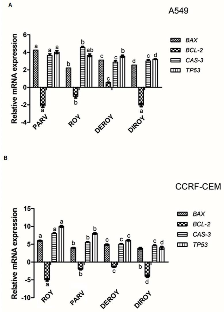 ( A ) Gene expression ( Bax, Bcl-2 , Cas-3 , and TP53 ) in A549 and ( B ) CCRF-CEM cell lines after 24 h treatment with all the compounds: Roy (3 µg/mL), Deroy (6.25 µg/mL), Diroy (25 µg/mL), and Parv (1.15 µg/mL) in A549 cells and Roy (0.7 µg/mL), Deroy (4.5 µg/mL), Diroy (25 µg/mL), and Parv (1.15 µg/mL) in CCRF-CEM cells. The transcript level of each gene was normalized to the expression of a reference gene ( 18S RNA ). Data are presented as a fold change in cells treated with tested compounds vs. untreated, control cells, in which expression levels of the genes were set as 1. The mean values ± SD were calculated in triplicates. The same letter (a, b, c and d) at the same genes is not significantly different at the level of p > 0.05.
