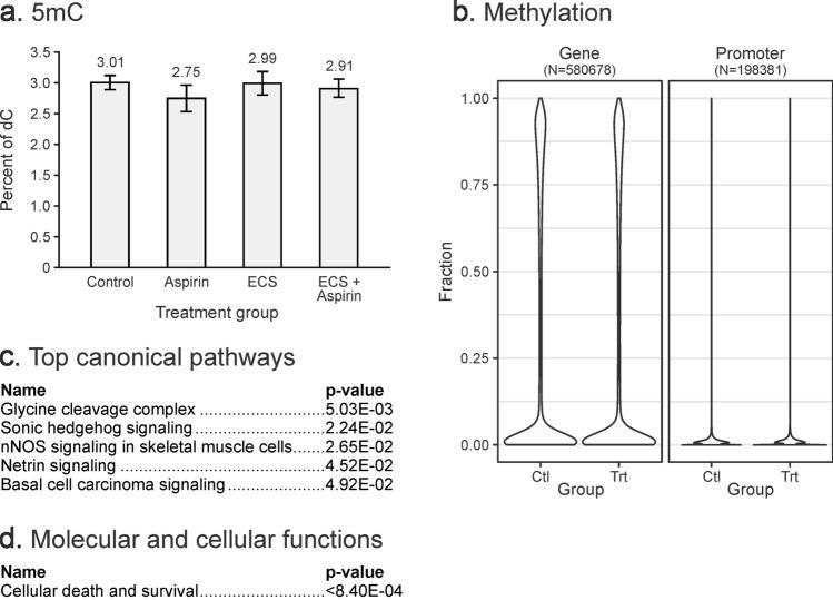 DNA methylation changes in lung DNA of female A/J mice (N = 5) exposed to ECS for 10 weeks with or without aspirin co-treatment. ( a ) Global cytosine methylation levels determined by isotope dilution HPLC–ESI–MS/MS. Values represent the mean ± standard deviation of 5 independent measurements. ( b ) Violin plots of methylation fractions of CpG sites in gene bodies and promoters, as assayed by RRBS/oxRRBS. Differential methylation data was input into Ingenuity Pathway Analysis (IPA). ( c ) Top canonical pathways associated with DMRs. ( d ) Molecular and cellular functions associated with DMRs.