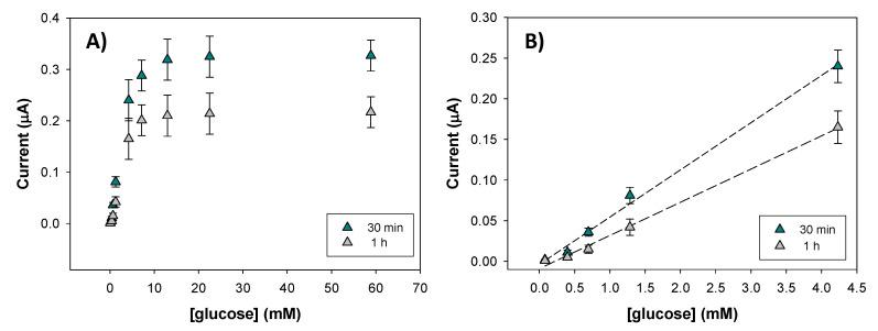 Response of the 17% graphite + 1% Ag@NDs electrodes after being mixed with glucose oxidase in the <t>thermomixer</t> for 30 min and 1 h for glucose concentration between 0–60 mM ( A ). Linear concentration range for t = 30 min and t = 1 h ( B ). The experimental error was calculated as the standard deviation for n = 3 measurements.