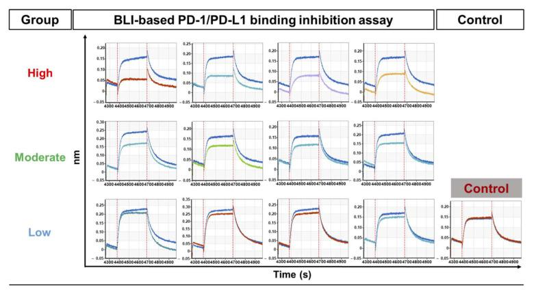Screening of functional scFv antibodies using an optimized BLI-based PD-1/PD-L1-binding inhibition assay. Inhibitory activity analysis of 72 individual periplasmic scFv antibodies. Analysis of inhibitory activity against PD-1‒PD-L1 interaction was performed using BLI-based assays under optimized conditions. The relative inhibitory efficiency of scFvs was calculated by normalizing the PD-1/PD-L1-binding response in the presence of the TES buffer to 100%. Classification and response plots (sensorgrams; for the top four clones of each group) of the three groups by difference in inhibitory efficacy (high, ≥30%; moderate, ≥15%; and low,