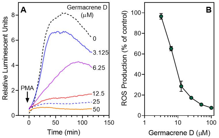Inhibition of PMA-stimulated neutrophil ROS production by germacrene D. ( A ) Neutrophils were treated with 1% DMSO (negative control) or the indicated concentrations of germacrene D. After 10 min of preincubation, the cells were activated with 200 nM PMA (indicated by an arrow), and ROS production was monitored using an L-012-amplified assay system. ( B ) Relative integrated luminescence (120 min) is shown as the luminescence ratio normalized to background (1% DMSO) and plotted against <t>germacrene</t> D concentrations. The data are presented as the mean ± S.D. (N = 3) from one experiment. For both panels, a representative experiment from three independent experiments is shown.