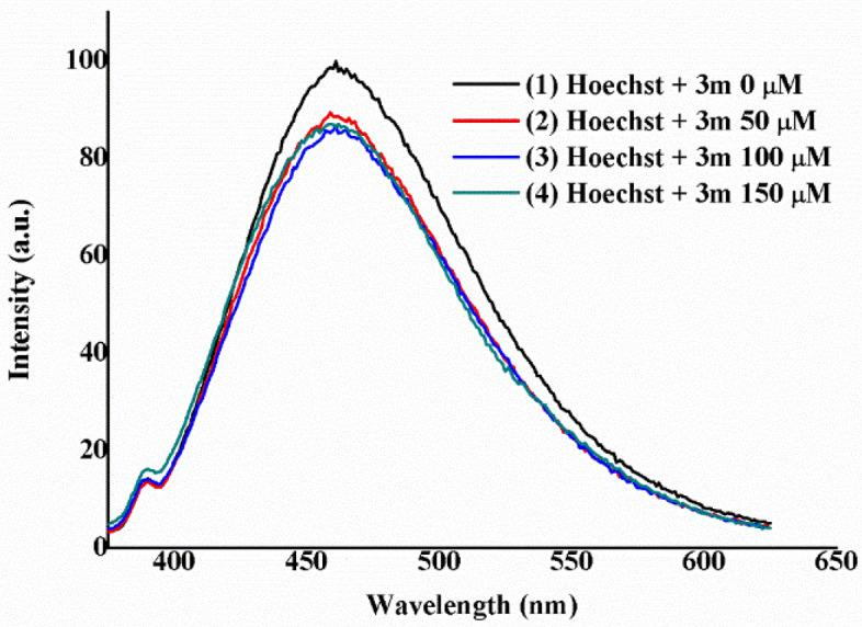 Titration experiment of a solution of ctDNA (200 µM) and Hoechst 33342 (2.5 µM) in Tris/HCl (0.1 M, pH 7.2) with increasing concentrations of compound 3m (0–150 µM). The plot is normalized to the maximum intensity of the initial experiment.