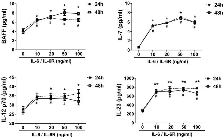 Exogenous IL-6/IL-6R promotes the production of Tfh cell and B cell differentiation factors. The secretion of cytokines (IL-7, BAFF, IL-12 p70, and IL-23) in the supernatant after stimulation of IL-6/IL-6R at 24 h and 48 h ( n = 6). * p