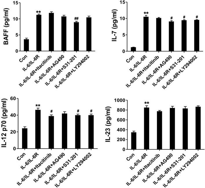 The secretion of cytokines (IL-7, BAFF, IL-12 p70, and IL-23) in the supernatant following stimulation with <t>IL-6/IL-6R</t> (50 ng/ml) with or without different inhibitors; ** p