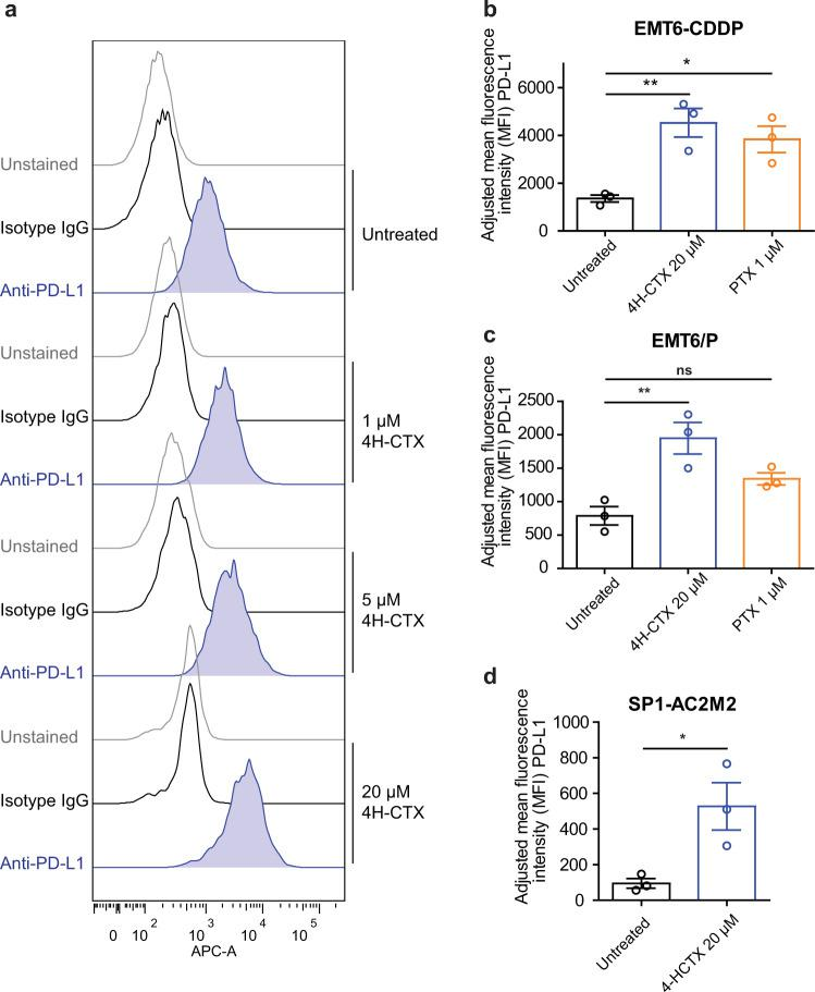 PD-L1 expression increases in response to 4H-CTX or paclitaxel (PTX) treatment in vitro. a  EMT6-CDDP cells were treated with increasing concentrations of 4H-CTX, which resulted in increased expression of PD-L1 analyzed by flow cytometry.  b  EMT6-CDDP,  c  EMT6/P, or  d  SP1-AC2M2 cells were treated with 20µM 4-HCTX or 1µM of PTX; values represent mean fluorescence intensity of PD-L1 analyzed by flow cytometry with subtraction of mean fluorescence intensity of isotype IgG. One-way analysis of variance with Tukey's multiple comparison test. Unpaired  t -test for SP1-AC2M2 analysis. * p