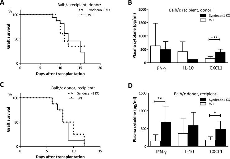 Sdc-1 deficiency affects cytokine levels in allograft recipients without affecting allograft survival. Allograft survival in a fully mismatched heterotopic heart transplantation model. Hearts were obtained from Sdc-1-deficient (n = 9) or WT mice (n = 8) and transplanted in Balb/c mice (A). Plasma cytokine levels in Balb/c recipient mice that received WT or Sdc-1 deficient hearts (B). Allograft survival of Balb/c hearts in WT (n = 8) or Sdc1-deficient (n = 8) recipients (C). Plasma cytokine levels in WT or Sdc-1 deficient recipients that received a Balb/c heart (D). * p