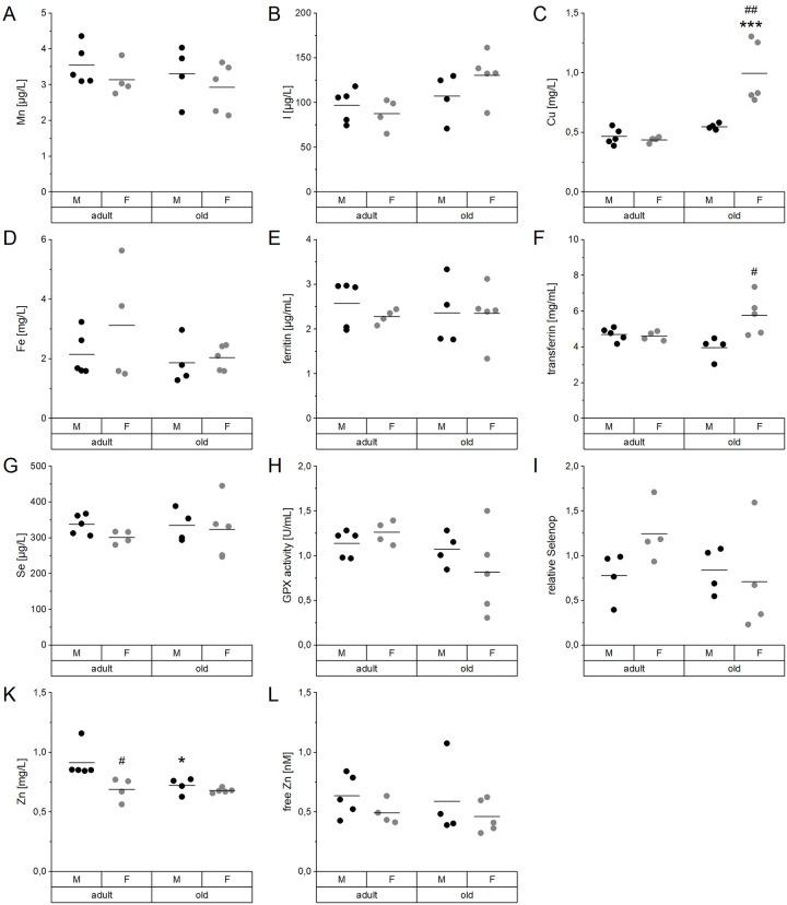 Age- and sex-related changes of serum TE profiles and biomarkers. Concentrations of Mn ( A ), I ( B ), Cu ( C ), Fe ( D ), Se ( G ), and Zn ( K ) were analyzed in the serum of adult (24 weeks) and old (109-114 weeks) male and female C57BL/6Jrj mice (n = 4-5) receiving chow diet. Serum concentrations were determined using ICP-MS/MS ( A - D , G , K ). Further biomarkers were detected by <t>ELISA</t> ( E , F ) and fluorescent probes ( L ) to assess the Fe marker ferritin ( E ) and <t>transferrin</t> ( F ) as well as free Zn ( L ), respectively. The Se status was further validated by GPX activity ( H ) and relative Selenop levels ( I ), based on NADPH-consuming glutathione reductase coupled assay and Dot blot analysis, respectively. Statistical testing based on Two-Way ANOVA and post hoc analysis using Bonferroni's test with * p
