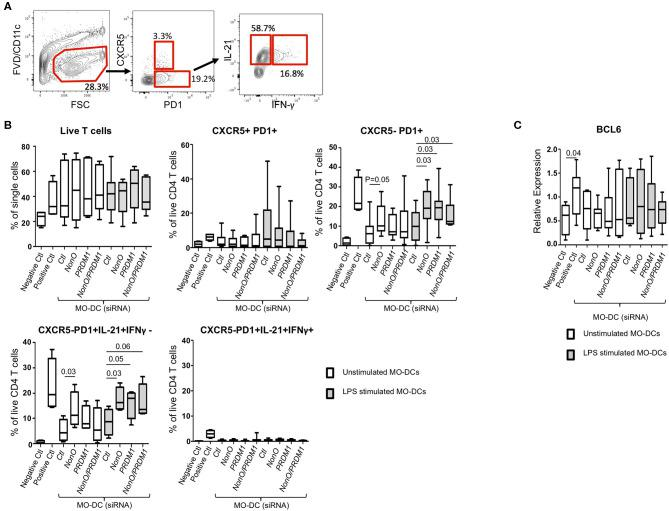 <t>PRDM1-</t> or NonO-deficient MO-DCs induce increased T FH differentiation. Allogenic culture of naïve CD4+ T cells and MO-DCs was set up to induce T FH differentiation. Expression levels of PRDM1 or NONO in MO-DCs were modulated by transfection with siRNAs before co-culture. After 6-days culture, T FH cell differentiation was measured by IL-21, IFNγ, CXCR5, and PD1 expression by flow cytometry. (A) A representative flow image. (B) Dead cells were excluded using Fixable Viability Dye eFluor 506, and the percentage of live CD4 + T cells was calculated. T FH -like cells (CXCR5+/PD1+), CXCR5- helper T cells (CXCR5-/PD1+), and cytokine expressing helper T cells (CXCR5-/PD1+/ IL21+/ IFN-γ-, and CXCR5-/PD1+/IL21+/ IFN-γ+) were calculated and plotted. Co-culture of T cells with LPS pre-stimulated MO-DCs was indicated with gray filled box and culture with unstipulated MO-DCs was indicated with open box. Negative control is naïve CD4+ T cell alone and Positive control is naïve CD4+ T cells with CD2/3/28 activation beads IL-6 (50 ng/ml) and IL-12 (20 ng/ml). In the Box-and-Whisker plot, horizontal bars indicate the median, boxes indicate 25–75th percentile, and the whiskers indicate 10 and 90th percentile. Four independent experiments ( n = 9). Significance determined by Mann Whitney test. (C) BCL6 expression was quantified by qRT-PCR. Relative expression was calculated to the level of housekeeping gene, POLR2A . In the Box-and-Whisker plot, horizontal bars indicate the median, boxes indicate 25–75th percentile, and the whiskers indicate 10 and 90th percentile. Three independent experiments ( n = 9). Significance determined by Mann Whitney test.