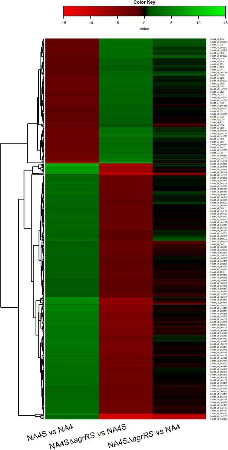 Heatmap of log2-fold changes of differentially expressed genes in C. metallidurans NA4S versus NA4, NA4SΔ agrRS versus NA4S and NA4SΔ agrRS versus NA4 under non-selective growth conditions.