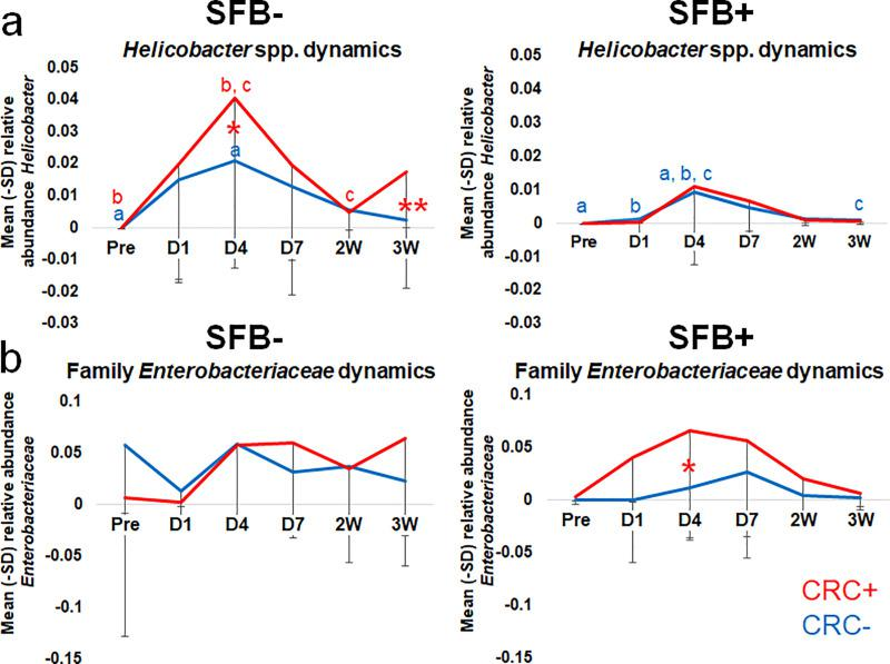 Relative abundance of Helicobacter spp. at D4 PI predictive of CRC development in SFB- but not SFB+ mice. Family Enterobacteriaceae and SFB interact in CRC development. Relative abundance of (A) Helicobacter spp. and (B) family Enterobacteriaceae ( Escherichia-Shigella Escherichia sp.) from Pre-inoculation to 3W PI in SFB- and SFB+ Helicobacter spp.-inoculated mice. Two-way RM ANOVA performed for SFB- and SFB+ mice separately: like letters denote significant ( p