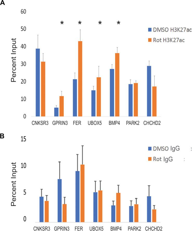 CTCF site H3K27 enhancer activation in response to rotenone. (A) The local abundance of H3K27ac within CTCF binding sites at Parkinson's disease-associated genes was measured with ChIP-qPCR and expressed as the percent of total DNA input used for immunoprecipitation. (B) The negative control for ChIP analysis was Rabbit IgG. Significance was tested with paired Student's t -test using the percent input of vehicle (DMSO) vs rotenone, and post hoc analysis for multiple hypotheses was done using the false discovery method. *FDR