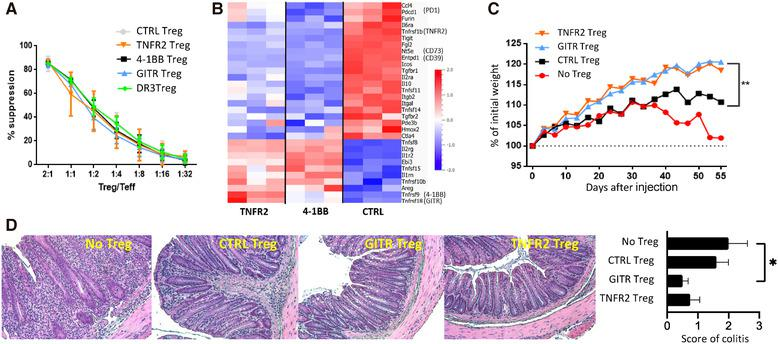 Costimulation of Tregs by TNFRSF receptors modified their expression of suppressive molecules and increased their capacity to suppress colitis. (A) Tregs, preactivated with anti‐CD3/CD28 mAb and TNFRSF agonists, were tested for their in vitro suppressive function. Mean (±SD) values from one representative of three independent experiments is shown. (B) DEG (FDR