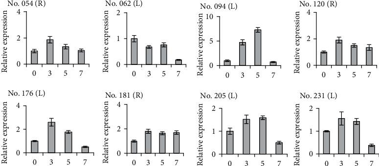 The qRT-PCR analysis of 8 DEFs revealed by cDNA-SRAP method in leaves (L) and roots (R) of maize in a series of days (0, 3, 5, and 7) of treatments under low Pi stress.