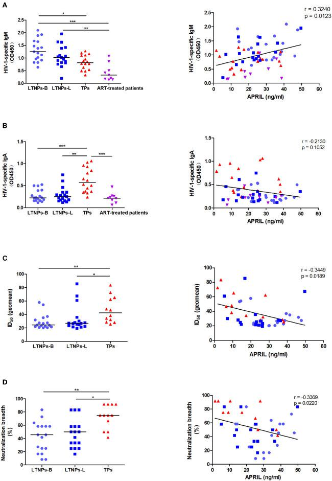 Associations between the plasma levels of APRIL and immunoglobulin production. (A) Associations between the APRIL levels and HIV-1-specific IgM in HIV-1-infected individuals ( n = 59). (B) Associations between the APRIL levels and HIV-1-specific IgA in HIV-1-infected individuals ( n = 59). (C) Associations between the APRIL levels and neutralization titers in untreated HIV-1-infected individuals ( n = 46). (D) Associations between the APRIL levels and neutralization breadth in untreated HIV-1-infected individuals ( n = 46). LTNPs-B, long-term non-progressors at baseline; LTNPs-L, long-term non-progressors at the latest measurement; TPs, typical progressors; ART, antiretroviral therapy; ID 50 , 50% inhibitory dilution. Intergroup comparisons were performed using a Kruskal–Wallis test, followed by Dunn's post-test; p and r values were calculated by Spearman's rank correlation tests (* p