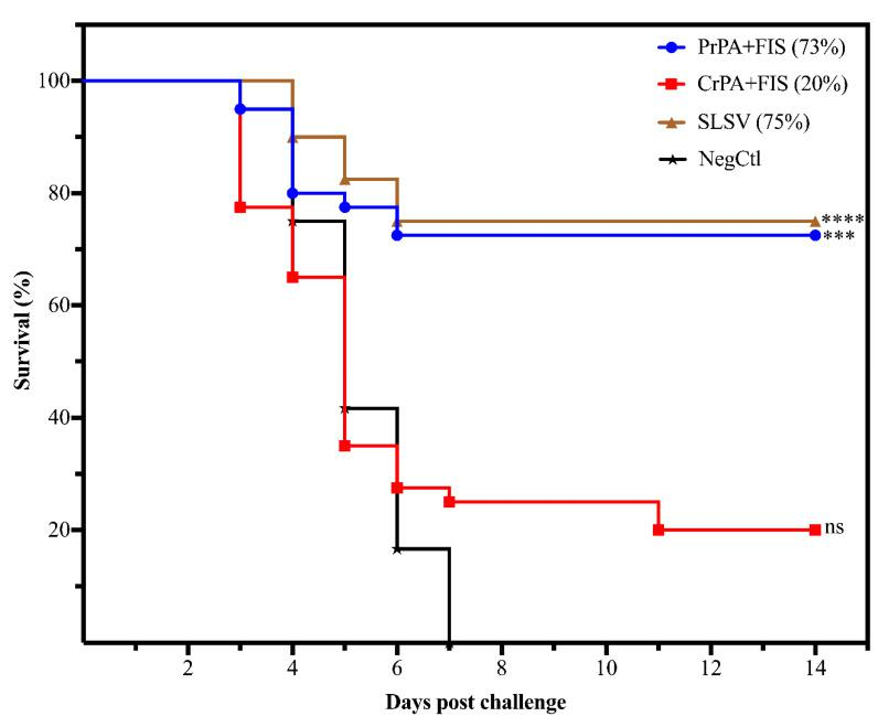 The cumulative mice survival curve following passive in vivo transfer of polyclonal IgG purified from cattle immune sera A/J mice. The mice were lethally challenged with 2.16 × 10 5 B. anthracis 34F2 spores. The sera are from cattle vaccinated twice (week 0 and 3) with either PrPA+FIS, CrPA+FIS, SLSV groups adjuvanted with emulsigen-D ® /alhydrogel ® and a NegCtl group (also see Table 2 for the number of mice allocated to each group). The survival rate in the Log-rank (Mantel–Cox) test was compared to the NegCtl group. The significant values between groups are presented as **** p