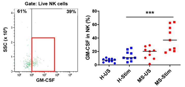 GM-CSF expression in natural killer (NK) cells: Fresh isolated PBMC were stimulated with anti-CD3/anti-CD28 for 5 days and restimulated with PMA/I in the presence of brefeldin A during the last 5 h. The left panel shows a representative flow cytometry analysis in which cells were gated for live NK cells (full details on the gating strategy can be found in Figure S2 ). Then, the percentage of GM-CSF-producing cells was counted, and the collective results in healthy controls (H) and MS patients are shown (right panel). US: unstimulated cells; Stim: stimulated cells. Horizontal lines are medians. *** p
