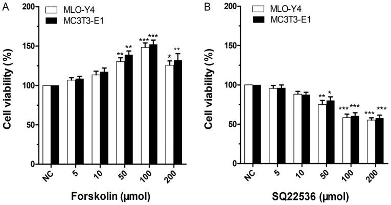 Effects of forskolin and SQ22536 on MLO-Y4 and MC3T3-E1 cell viability. The NC group was treated with 0 µmol forskolin or SQ22536. (A) Effect of forskolin on MLO-Y4 and MC3T3-E1 cell viability. Compared with the NC group, the 100 µmol forskolin group exhibited the most significant increase in MLO-Y4 cell viability (P