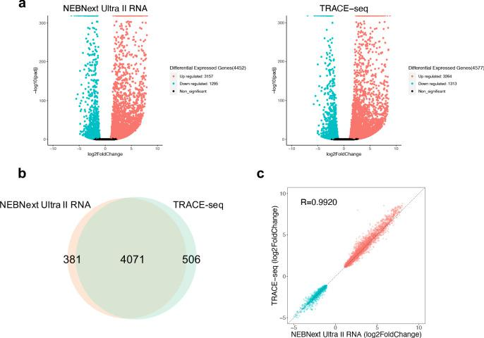 Performance of TRACE-seq in differential expression analysis. ( a ) Volcano plot showing differential expressed genes between undifferentiated and differentiated mESCs detected by NEBNext Ultra II RNA kit and TRACE-seq. Significantly up-regulated and down-regulated expressed genes (padj