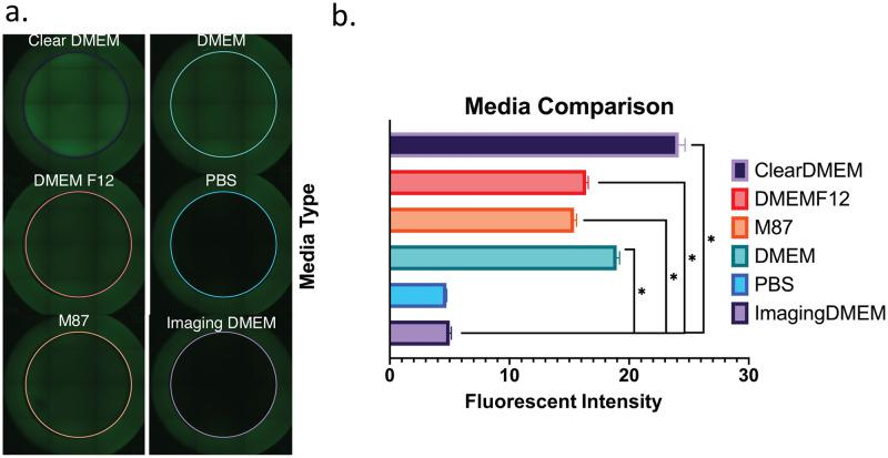 Fluorescence produced by cell media. a) Representative tiled-images of wells containing different media (phenol red-free 'ClearDMEM;' standard 'DMEM' containing phenol red; 'DMEM/F12;' phosphate buffered saline 'PBS;' ''M87' breast epithelial medium; and FlouroBrite ™ 'Imaging DMEM' b) Fluorescent intensity within the colored circles (shown in 2a) was measured by ImageJ (n = 6 for each condition). * statistically significant (p