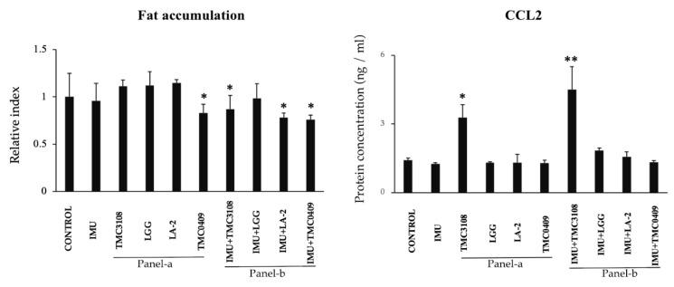 Immunobiotic mediated regulation of fat accumulation and inflammatory responses in an immune cell-adipocyte co-culture model. A total of 1 × 10 6 immune cells/well of a 6-well plate were cultured on adipocytes 4-days differentiated. Bacterial samples (5 × 10 8 cells/well) were also added and cultured for 2 or 4 days. Adipocyte cells were stained with Oil red O stained and fat accumulation in the adipocytes was quantitatively analyzed by image J software. The ELISA-based concentration of CCL2 protein in supernatant of adipocyte-culture stimulated by immune cells and lactic acid bacteria (LAB). All data shown are the mean ± SD of three independent experiments performed in triplicate. The asterisks: '*' and '**' indicated statistical differences either between bars of panel-a and control or between bars of panel-b and IMU, with significant levels of p