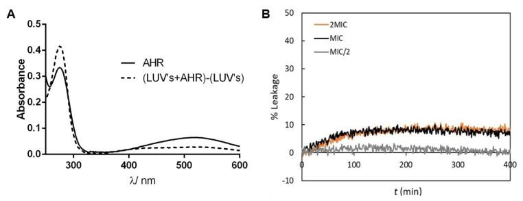 AHR at relevant antimicrobial concentrations interacts with phospholipid bilayers without compromising their integrity. ( A ) Electronic absorption spectrum of AHR at 20 µM in buffer Tris-HCl, pH 7.4 in the absence and presence of 1mM 1,2-dioleoyl- sn -glycero-3-phosphocholine (DOPC) large unilamellar vesicles (LUV) suspension. ( B ) Representative curves (median behavior from 6 independent experiments) of the effect of AHR on CF leakage from DOPC LUVs in suspensions, with a total lipid concentration of 0.5 mM, in the presence of different AHR concentrations: 15.6 mg/L (2 MIC, 40 µM), 7.8 mg/L (MIC, 20 µM) and 3.9 mg/L (MIC/2, 10 µM). These experiments were performed at 25 °C.