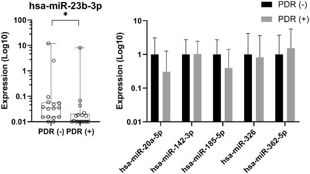 Expression levels of miRNAs in the vitreous with and without anti-VEGF therapy. The expression levels of miRNAs were measured in the vitreous of patients with PDR who had not received anti-VEGF treatment, PDR(–) and in the vitreous of patients who had received anti-VEGF treatment, PDR(+). For hsa-miR-23b-3p, the expression levels are shown as absolute amounts on a log10 scale relative to the PDR(–) group. Box plots indicate median, minimum, and maximum and first and third quartiles. ( A ) The symbol on the x -axis represents one individual without detectable expression. ( B ) For hsa-miR-20a-5p, hsa-miR-142-3p, hsa-miR-185-5p, hsa-miR-326, and hsa-miR-362-5p, the expression levels are shown as the means of absolute amounts with standard deviations as compared with the PDR(–) group on a log10 scale. * P = 0.03.